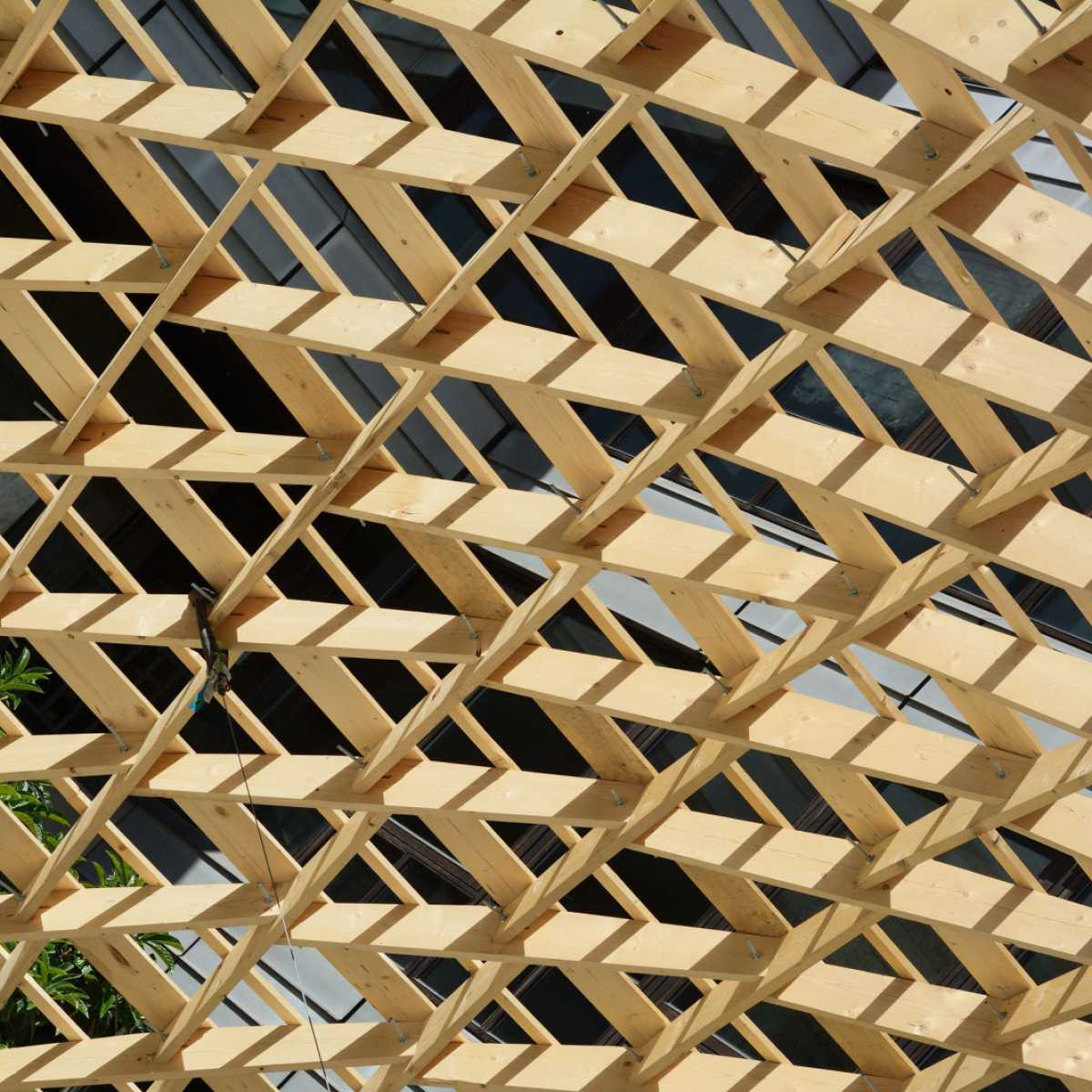 Sustainable alternatives to traditional building materials